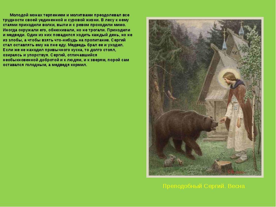 Преподобный Сергий. Весна Молодой монах терпением и молитвами преодолевал все...