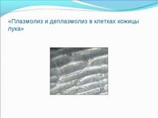 «Плазмолиз и деплазмолиз в клетках кожицы лука»