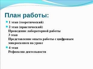 План работы: 1 этап (теоретический) 2 этап (практический) Проведение лаборато