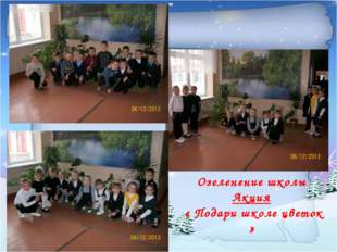 Озеленение школы Акция « Подари школе цветок »