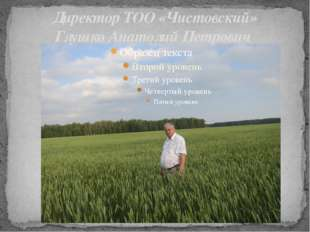 Директор ТОО «Чистовский» Глушко Анатолий Петрович