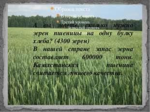 А вы знаете, сколько нужно зерен пшеницы на одну булку хлеба? (4300 зерен) В