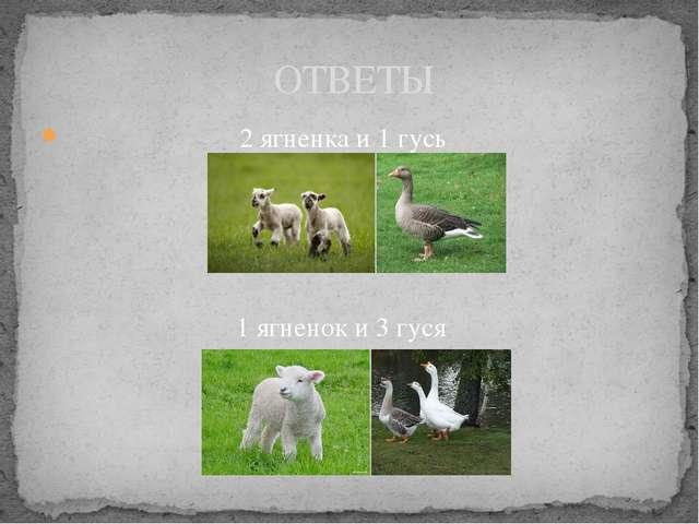 2 ягненка и 1 гусь ОТВЕТЫ 1 ягненок и 3 гуся
