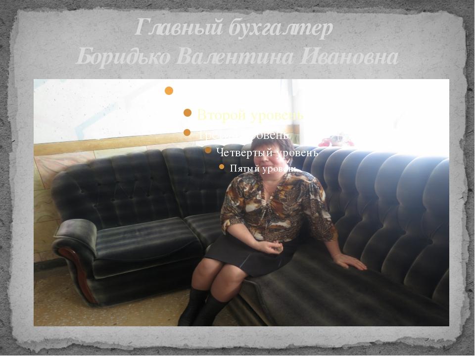 Главный бухгалтер Боридько Валентина Ивановна