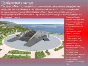 Прибрежный кластер: Стадион «Фишт», вместимостью 40000 человек, предназначен