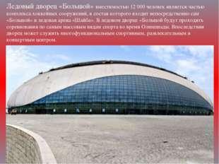 Ледовый дворец «Большой» вместимостью 12000 человек является частью комплекс