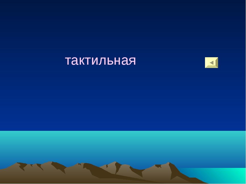 тактильная
