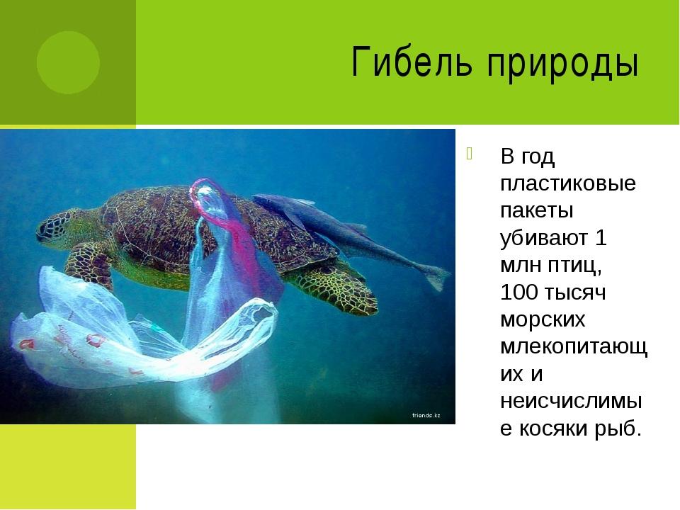 Гибель природы В год пластиковые пакеты убивают 1 млн птиц, 100 тысяч морских...