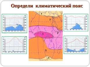 Определи климатический пояс