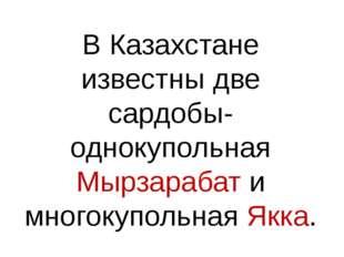 В Казахстане известны две сардобы- однокупольная Мырзарабат и многокупольная