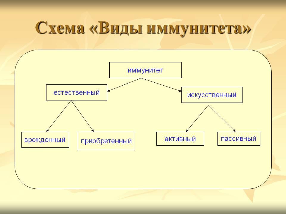 http://www.transferfaktory.ru/cont/img/yidy-immun.jpg