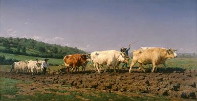 Пахота в Ниверне :: Роза Бонёр, 1849 год