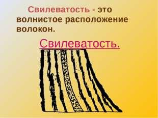 Свилеватость - это волнистое расположение волокон. Свилеватость.