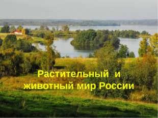 Растительный и животный мир России