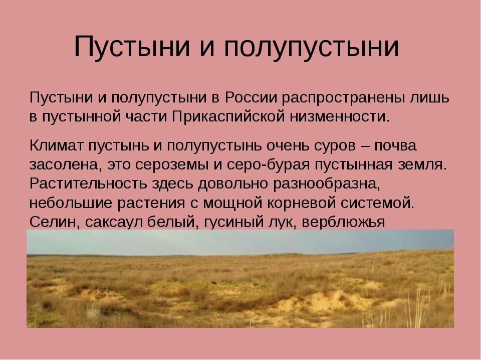 Пустыни и полупустыни Пустыни и полупустыни в России распространены лишь в пу...