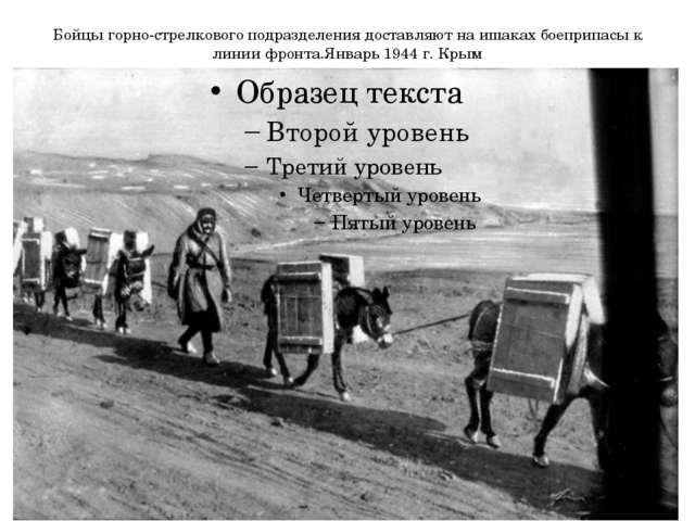 Бойцы горно-стрелкового подразделения доставляют на ишаках боеприпасы к линии...