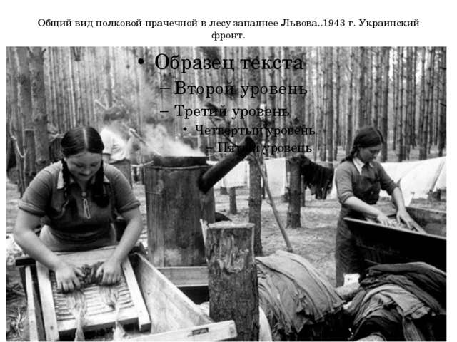 Общий вид полковой прачечной в лесу западнее Львова..1943 г. Украинский фронт.