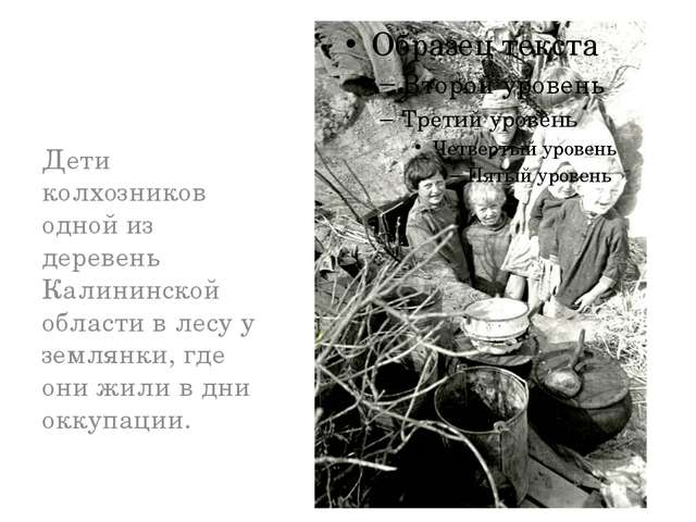 Дети колхозников одной из деревень Калининской области в лесу у землянки, гд...