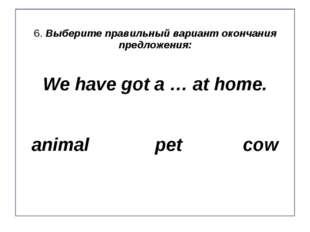 6. Выберите правильный вариант окончания предложения: We have got a … at home