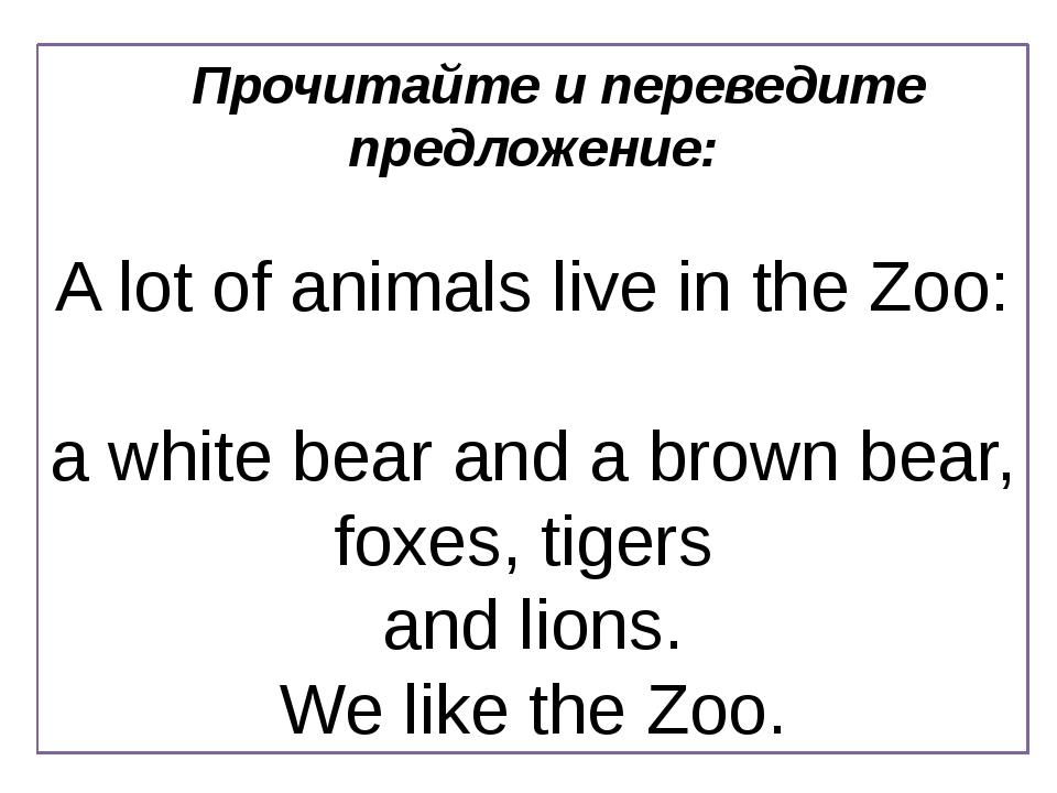 Прочитайте и переведите предложение: A lot of animals live in the Zoo: a whit...