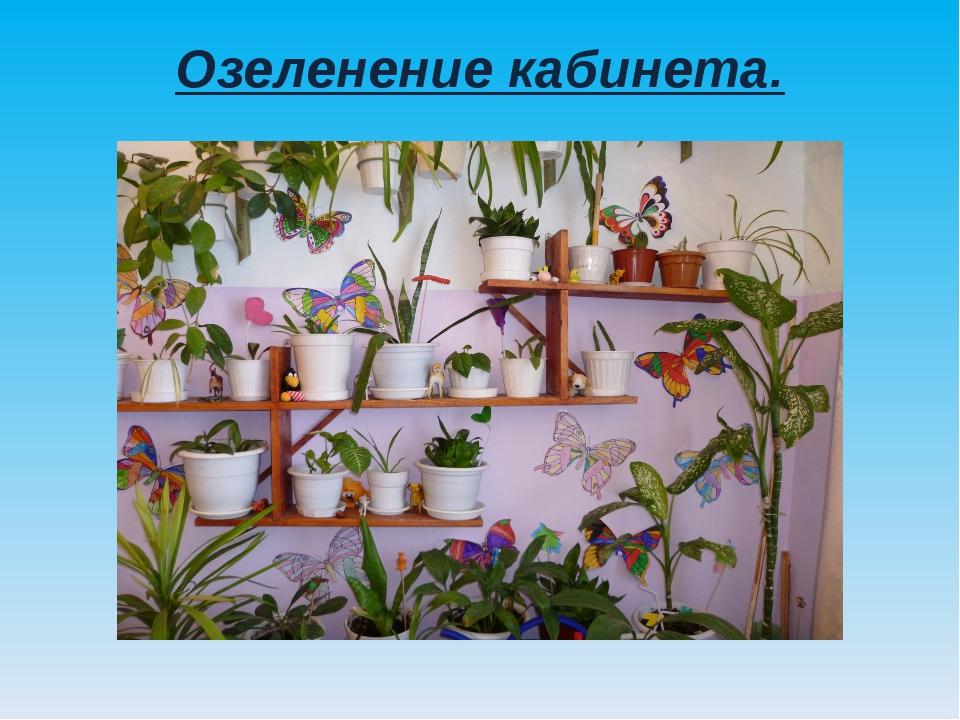 Озеленение кабинета.