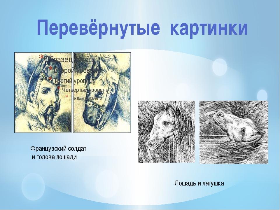 Перевёрнутые картинки Французский солдат и голова лошади Лошадь и лягушка