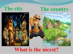 The city The country What is the nicest?