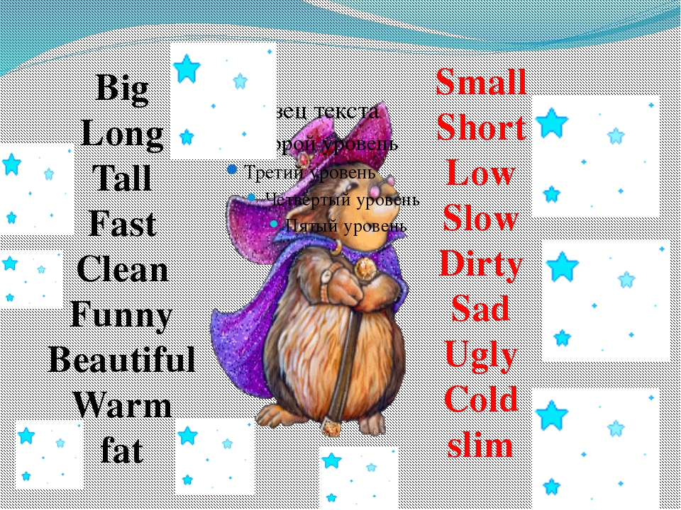 Big Long Tall Fast Clean Funny Beautiful Warm fat Small Short Low Slow Dirty...