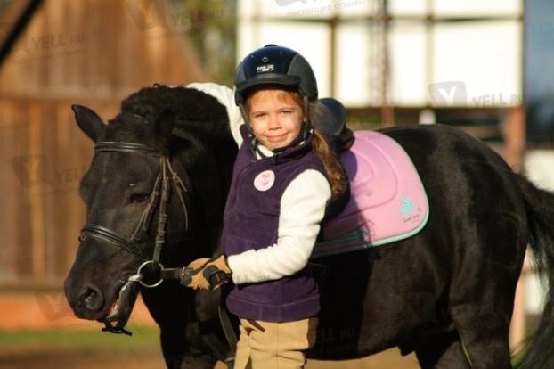 Обучение верховой езде,прогулки на лошадях