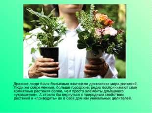 Древние люди были большими знатоками достоинств мира растений. Люди же совре
