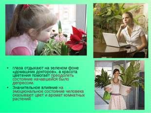 глаза отдыхают на зеленом фоне «домашних докторов», а красота цветения помога