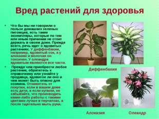 Вред растений для здоровья Что бы мы ни говорили о пользе домашних зеленых пи