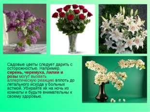 Садовые цветы следует дарить с осторожностью. Например, сирень, черемуха, ли