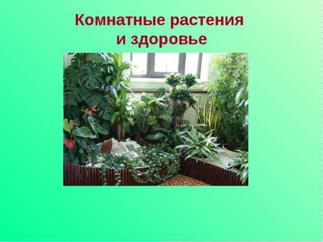 Комнатные растения и здоровье