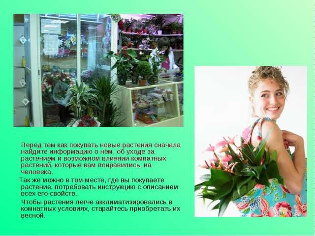 Перед тем как покупать новые растения сначала найдите информацию о нём, об у...
