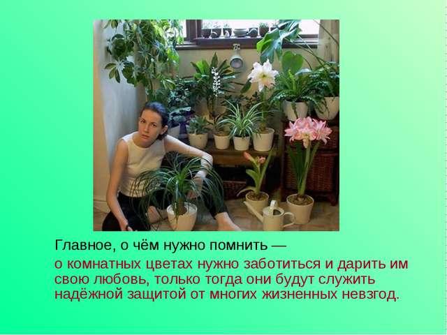 Главное, о чём нужно помнить — о комнатных цветах нужно заботиться и дарить...