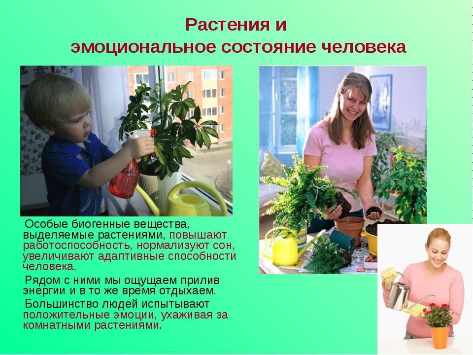 Особые биогенные вещества, выделяемые растениями, повышают работоспособность...