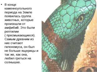 В конце каменноугольного периода на Земле появилась группа животных, которые