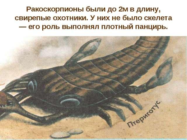 Ракоскорпионы были до 2м в длину, свирепые охотники. У них не было скелета —...