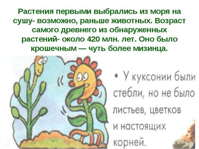 Растения первыми выбрались из моря на сушу- возможно, раньше животных. Возрас...