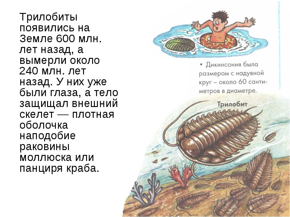 Трилобиты появились на Земле 600 млн. лет назад, а вымерли около 240 млн. ле...