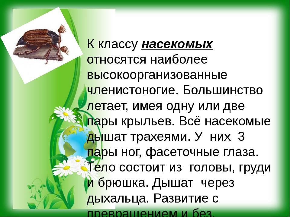 К классу насекомых относятся наиболее высокоорганизованные членистоногие. Бол...