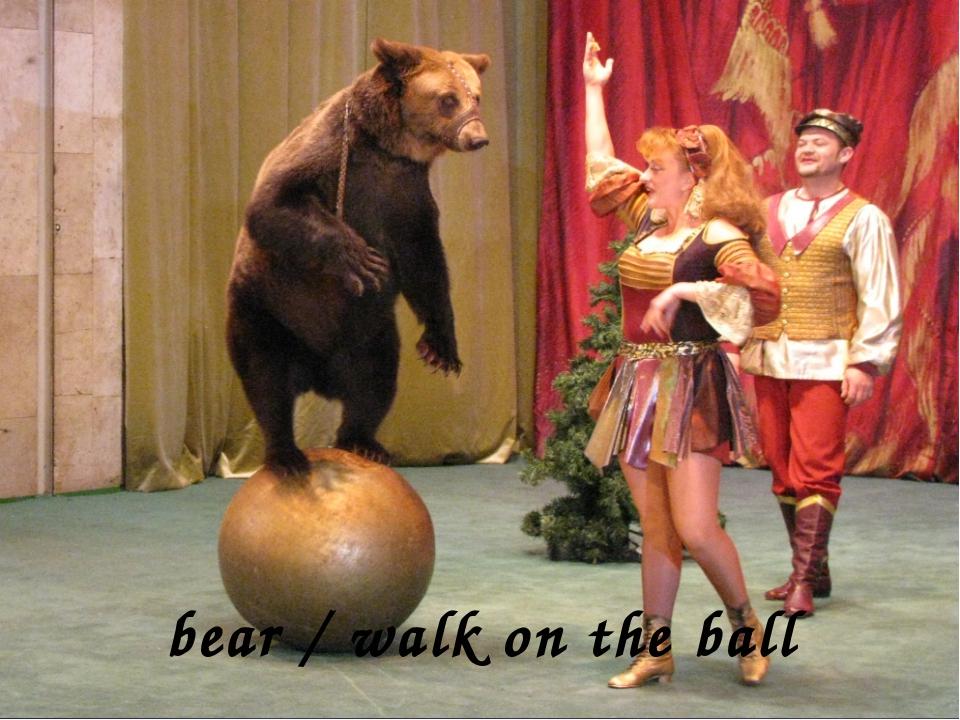 bear / walk on the ball