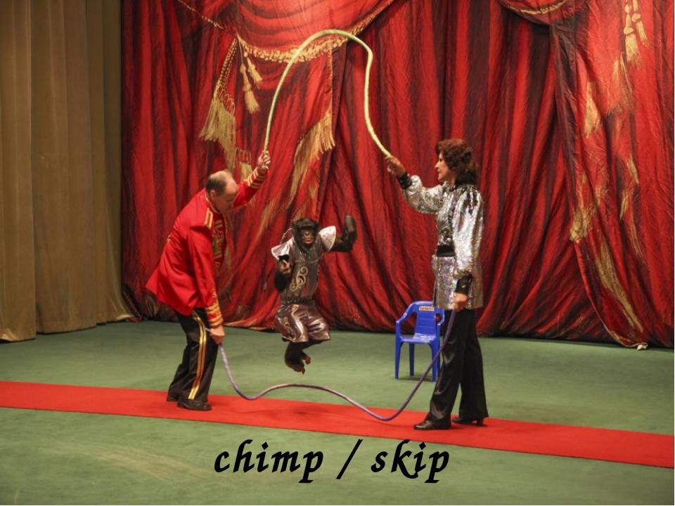 chimp / skip