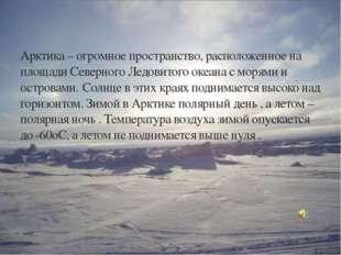 Арктика – огромное пространство, расположенное на площади Северного Ледовитог