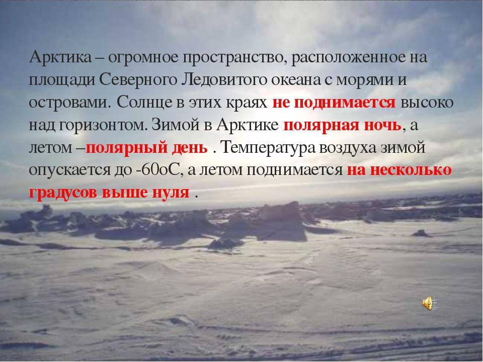 Арктика – огромное пространство, расположенное на площади Северного Ледовитог...