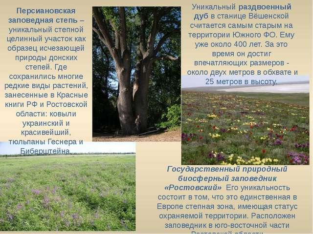 Государственный природный биосферный заповедник «Ростовский» Его уникальност...