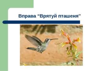 """Вправа """"Врятуй пташеня"""""""