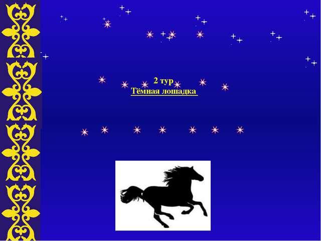 2 тур Тёмная лошадка Тема
