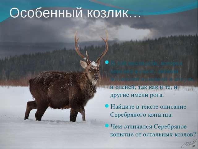 Особенный козлик… В той местности, которая описана в сказе, дикими козликами...